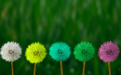 La transition vers une communication plus responsable : enjeux et leviers d'action